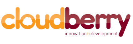 Cloudberry Social Enterprise Development in Birmingham